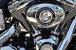 Dyna low rider engine study.