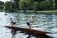Maidenhead, United Kingdom.  &quot;Mixed Double&quot; approaching the finish line.&quot;Thames Punting Club Regatta&quot;, Bray Reach.<br /> 11:31:18 Sunday  06/08/2017<br /> <br /> [Mandatory Credit. Peter SPURRIER Intersport Images}.<br /> <br /> LEICA M (Typ 262) mm  f6.8   1/250 /sec    100 ISO River Thames, .......... Summer, Sport, Sunny, Bright, Blue Skies, Skilful,