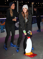 OCT 23 Natural History Museum Ice Rink Launch