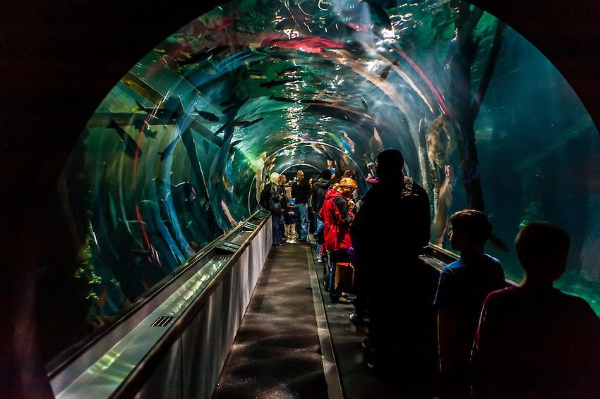Aquarium Of The Bay Fisherman 39 S Wharf San Francisco California Usa Blaine Harrington Iii