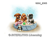 GIORDANO, CUTE ANIMALS, LUSTIGE TIERE, ANIMALITOS DIVERTIDOS, paintings+++++,USGI2905,#AC# ,dogs