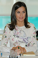 MADRID, SPAIN-July 08: Queen Letizia at the International Summit of Cancer Research at the AECC offices in Madrid, Spain on July 08, 2019. ***NO SPAIN***<br /> CAP/MPI/RJO<br /> ©RJO/MPI/Capital Pictures