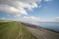 peloton across the Dutch Dikes<br /> <br /> Eneco Tour 2013<br /> stage 3: Oosterhout - Brouwersdam (187km)