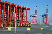 Portalhubwagen und Kraehne bei Eurogate im Jade Weser Port: EUROPA, DEUTSCHLAND, NIEDERSACHSEN, WILHELMSHAVEN  (EUROPE, GERMANY), 22.03.2015:  Portalhubwagen der Firma Eurogate stehen aufgereiht auf dem Gelaende des Jade-Weser-Port. Die Umschlaggeraet fuer ISO-Container warten auf das naechste Schiff der den Tiefwasserhafen anlaeuft,  um die Container zum Abstellplatz und spaeter zum LKW zu transportieren. Ladekraehne im Hintergrund auf Warteposition.