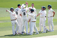 Matthew Carter of Notts celebrates with his team mates after taking the wicket of Robbie White during Essex CCC vs Nottinghamshire CCC, Specsavers County Championship Division 1 Cricket at The Cloudfm County Ground on 15th May 2019