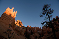 "The sun rises over the ""hoodoos"" of Bryce Canyon National Park in southern Utah. The odd limestone formations erode out of the cliffs in the area, and gain their red, orange and yellow colors from oxidizing minerals in the stone."