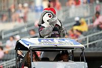 Fayetteville Woodpeckers mascot Bunker is introduced during a Carolina League game against the Down East Wood Ducks on August 13, 2019 at SEGRA Stadium in Fayetteville, North Carolina.  Fayetteville defeated Down East 5-3.  (Mike Janes/Four Seam Images)