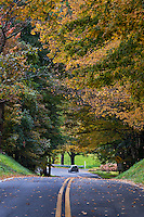 Autumn country road, Stockbridge, Massachusetts, USA