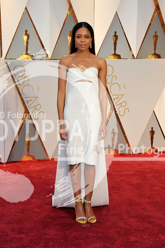 Naomie Harris attends the 89th Annual Academy Awards at Hollywood & Highland Center on February 26, 2017 in Hollywood, California.
