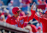 29 February 2020: Washington Nationals top prospect infielder Luis Garcia returns to the dugout after hitting a 2-run home-run in the top of the 7th inning against the St. Louis Cardinals in Spring Training at Roger Dean Stadium in Jupiter, Florida. The Cardinals defeated the Nationals 6-3 in Grapefruit League play. Mandatory Credit: Ed Wolfstein Photo *** RAW (NEF) Image File Available ***