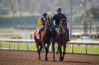 ARCADIA, CA - JUNE 03: Vale Dori #1 and Rafael Bejarano  after the Beholder Mile Stakes at Santa Anita Park  on June 03, 2017 in Arcadia, California. (Photo by Alex Evers/Eclipse Sportswire/Getty Images)