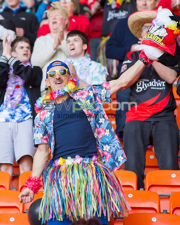Picture by Allan McKenzie/SWpix.com - 23/05/2015 - Rugby League - Kingstone Press Championship Summer Bash - iPro Sport Cup Final - North Wales Crusaders v Swinton Lions - Bloomfield Road, Blackpool, England - North Wales Crusaders fans, supporters.