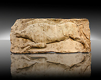 "Wild Boar from the ""Satyr Hunting Wils Animals, freezes, 460 B.C.  From Xanthos, UNESCO World Heritage site, south west Turkey. A British Museum exhibit GR 1848-10-20-2-9 (sculpture B 2902- 298)."