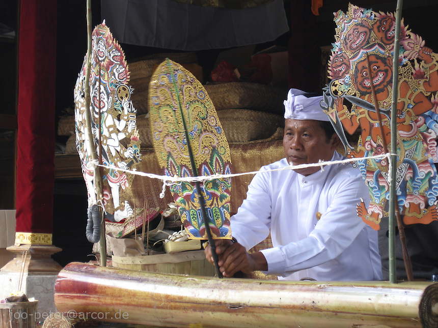 Dayang (puppet player) starts his sacred, ritual play (Wayang kulit) of cosmic order by posting kayonan (life tree) in the banana trunk as part of larger, day-long ceremonies  for purifying family house compound in  North of Ubud,   Bali, archipelago Indonesia, 2010