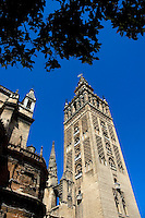 La Giralda, the famous gothic tower belonging to the Seville Cathedral, Seville, Andalusia, Spain.