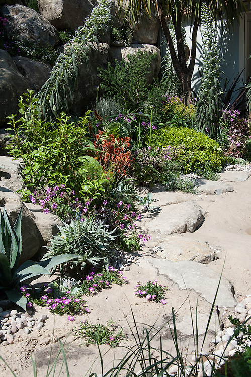 From the Moors to the Sea Garden, Chelsea Flower Show, 2014. Designed by Alan Titchmarsh and Kate Gould Gardens.