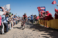 Jasper Stuyven (BEL/Trek-Segafredo) at the Carrefour de l'Arbre sector<br /> <br /> 115th Paris-Roubaix 2017 (1.UWT)<br /> One Day Race: Compiègne › Roubaix (257km)
