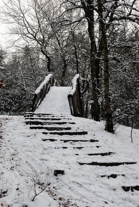 Driebergen,19 dec ,2009.sneeuw bij de zwitserse brug..(c)Renee Teunis.