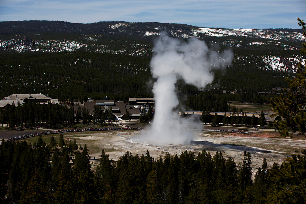 Old Faithful erupts in Yellowstone National Park, Wyoming on Tuesday, May 23, 2017. (Photo by James Brosher)