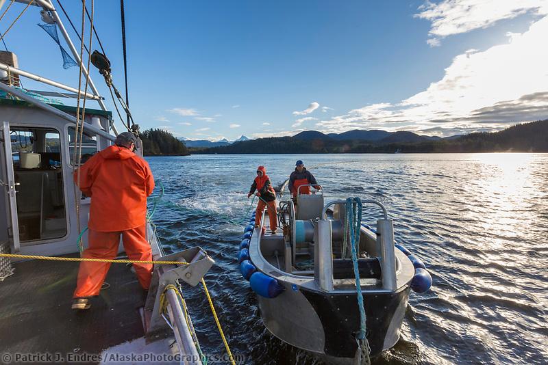 Crew purse seine fishing for Herring during the 2016 Sitka sac roe Herring fishery, near Sitka, Alaska.