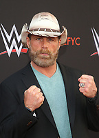 NORTH HOLLYWOOD, CA - JUNE 6: Shawn Michaels,  WWE's First-Ever Emmy &quot;For Your Consideration&quot; Event at The Saban Media Center in North Hollywood, California on June 6, 2018. <br /> CAP/MPIFS<br /> &copy;MPIFS/Capital Pictures