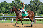 07172020:Javier Catellano wins on Indian Pride trained by Chad Brown at Saratoga 2020 <br /> Robert Simmons/Eclipse Sportswire