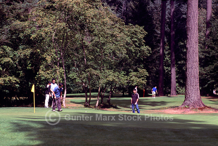Burnaby, BC, British Columbia, Canada - Golfers playing Golf at Central Park Golf Course