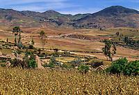 Peru.  Urubamba Valley near Maras.