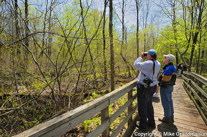 Bob Taylor and George Holland birdwatching off  the boardwalk during spring migration.<br />