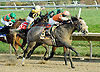 Win Willy winning The Brandywine Stakes at Delaware Park on 10/30/10