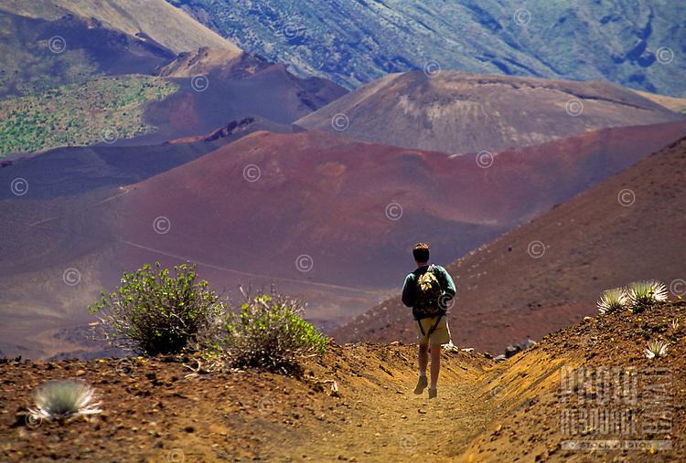Man hiking on sliding sands trail in Haleakala National park with silversword plants, Maui