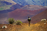 Man hiking on sliding sands trail in Haleakala National park with silversword plants, Maui