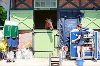 AUS-Team Levett in the Stables. 2017 FRA-Haras de Jardy International Eventing Show. Versailles, France. Sunday 16 July. Copyright Photo: Libby Law Photography