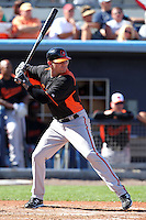 Baltimore Orioles outfielder Scott Beerer #80 at bat during a spring training game against the Tampa Bay Rays at the Charlotte County Sports Park on March 5, 2012 in Port Charlotte, Florida.  (Mike Janes/Four Seam Images)