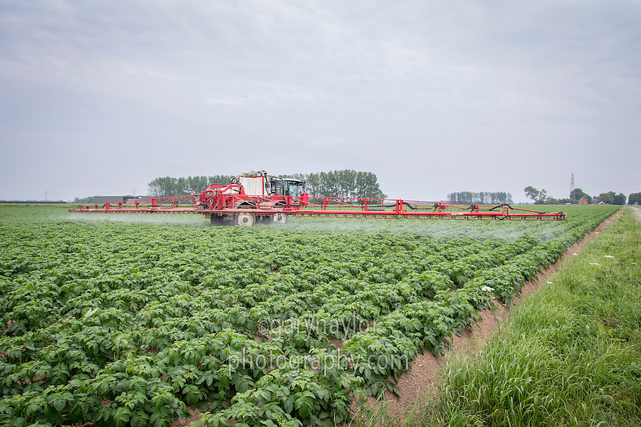Blight spraying potatoes - 36 meter Agrifac