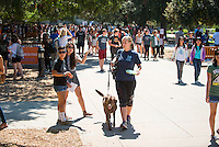 Over 100 organizations and departments set up in the Academic Quad to talk about what their organization is about and how students can participate at Occidental College's Involvement Fair, September 12, 2013. (Photo by Marc Campos, Occidental College Photographer)