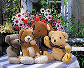 Interlitho, Alberto, CUTE ANIMALS, teddies, photos, 4 teddies, flowers(KL15647,#AC#)