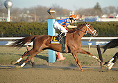 Coconut Shrimp, a Repole-Pletcher runner, got stir fried in the Busanda, finishing fourth in the field of six.