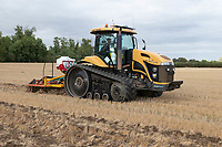Drilling oilseed rape in South Lincolnshire<br /> &copy;Tim Scrivener Photographer 07850 303986<br />      ....Covering Agriculture In The UK....