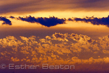 Stratocumulus band of clouds (lower) and altocumulus above it (dark band) at sunset. Mt William National Park, Tasmania