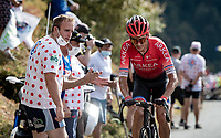 Warren Barguil (FRA/Arkea-Samsic) up the Puy Mary (uphill finish)<br /> <br /> Stage 13 from Châtel-Guyon to Pas de Peyrol (Le Puy Mary) (192km)<br /> <br /> 107th Tour de France 2020 (2.UWT)<br /> (the 'postponed edition' held in september)<br /> <br /> ©kramon