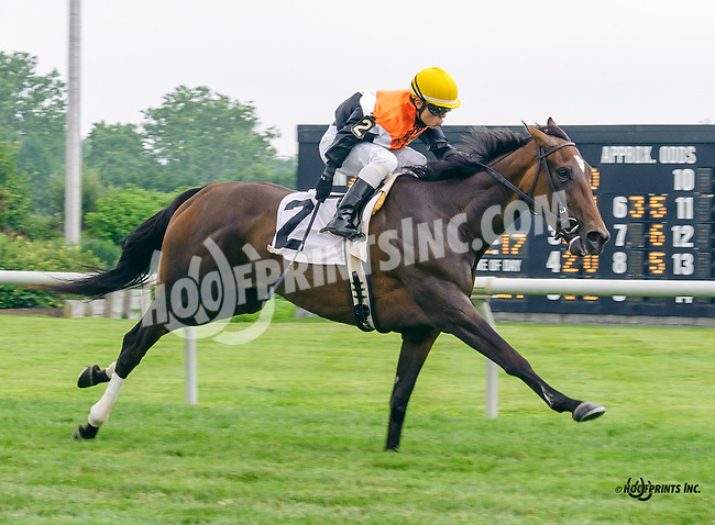 Last Resort winning at Delaware Park on 7/9/16