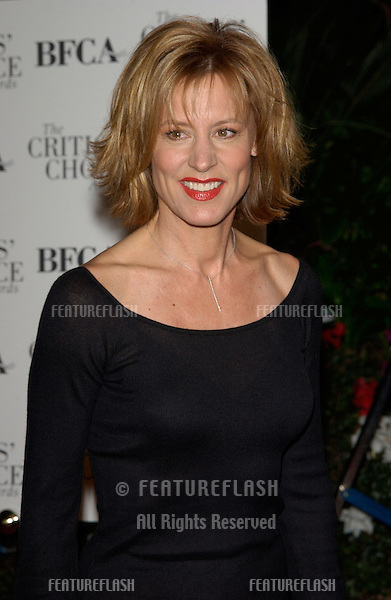 Actress CHRISTINE LAHTI at the Broadcast Film Critics Association's 7th Annual Critics Choice Awards at the Beverly Hills Hotel..11JUN2002...© Paul Smith/Featureflash
