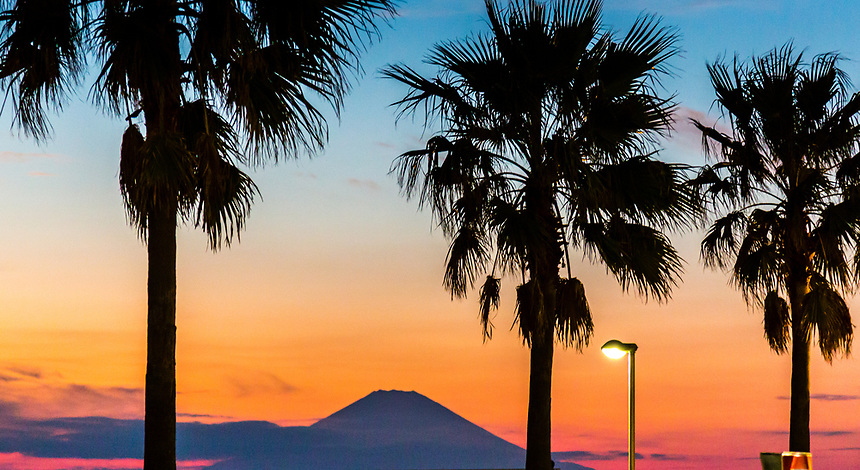 Mount Fuji sunset & Palm trees