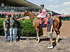 Señora de Lujan winning at Delaware Park on 7/17/14
