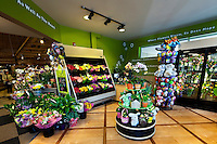 Bloom Store #2772 - 2226 Park Road, Charlotte, NC 28203 .