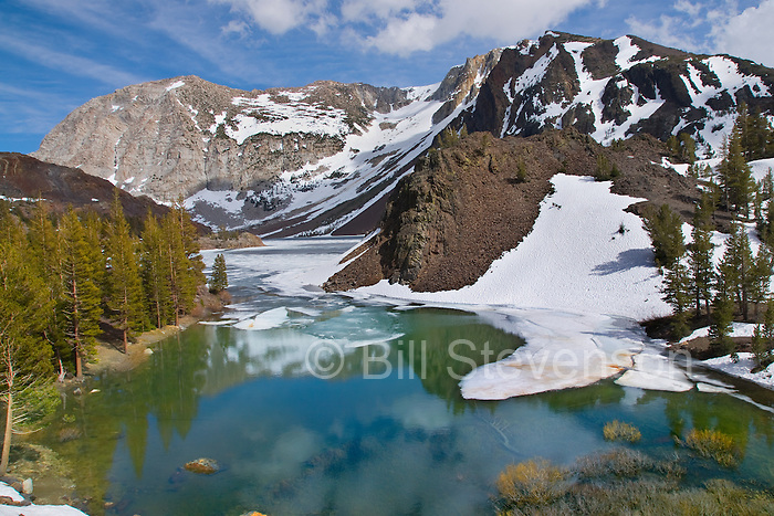 An image of ice floating in Ellery Lake in Yosemite National Park