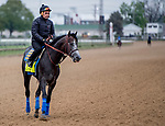 LOUISVILLE, KENTUCKY - APRIL 28: Roadster, trained by Bob Baffert, exercises in preparation for the Kentucky Derby at Churchill Downs in Louisville, Kentucky on April 28, 2019. Scott Serio/Eclipse Sportswire/CSM