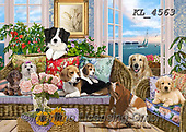 Interlitho-Franco, REALISTIC ANIMALS, REALISTISCHE TIERE, ANIMALES REALISTICOS, paintings+++++,dogs,KL4563,#a#, EVERYDAY ,puzzle,puzzles ,puzzle,puzzles