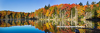 64776-010.19 Fall Color at small lake or pond Alger county in the Upper Peninsula, MI